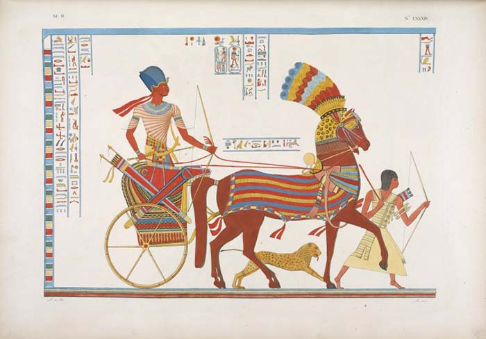 Ancient Egyptian Chariot