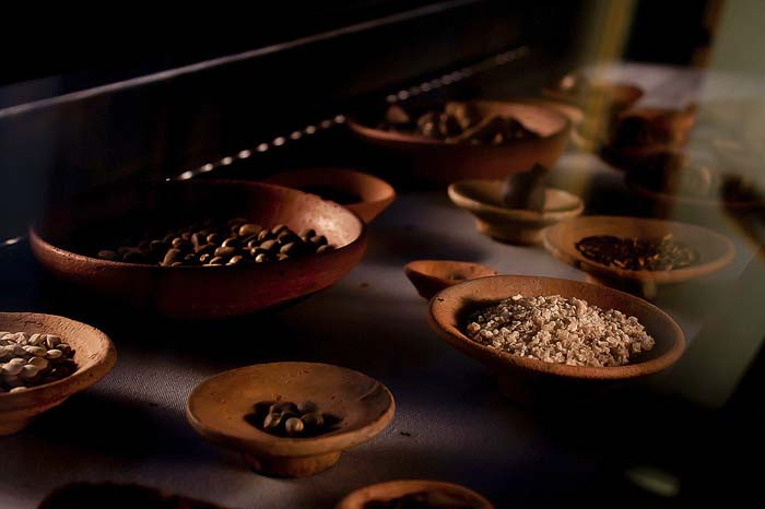 Ancient Egyptian Food and Drink