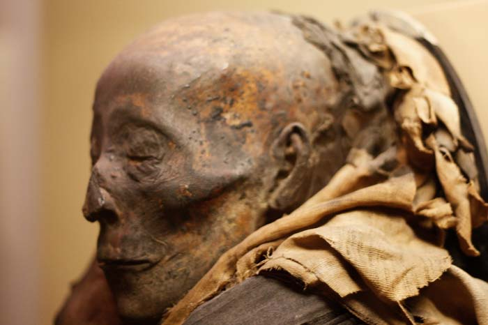 A Look at These Mummification Steps Will Make Your Skin Crawl
